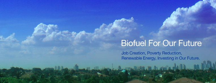 Biofuel For Our Future - Job creation, poverty reduction, renewable energy, investing in our future.